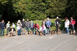 Welsh-Terrier-Online :: Das Portal - Welsh-Terrier-Treffen ::